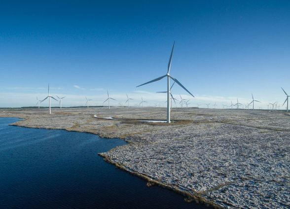 Whitelee-Windfarm